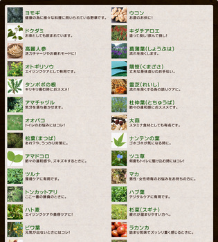 野草酵素2.jpg