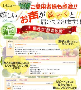 野草酵素4.jpg