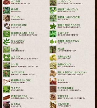 野草酵素5.jpg
